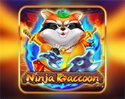 Ninja Raccoon